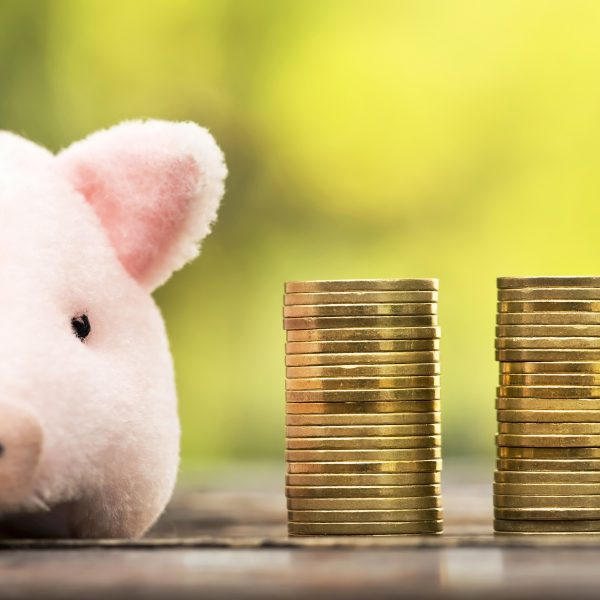 Money savings concept - website banner of pig and money coins